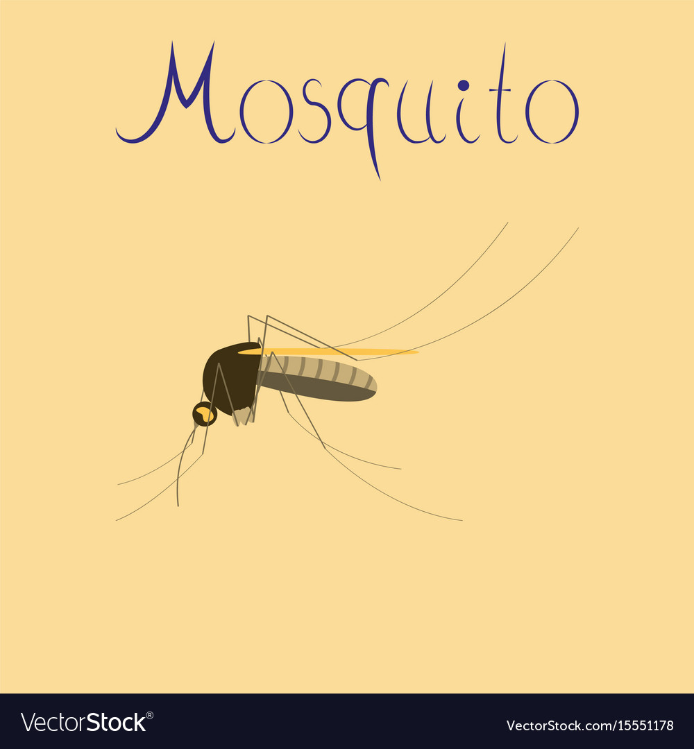 flat geometric sign with mosquito