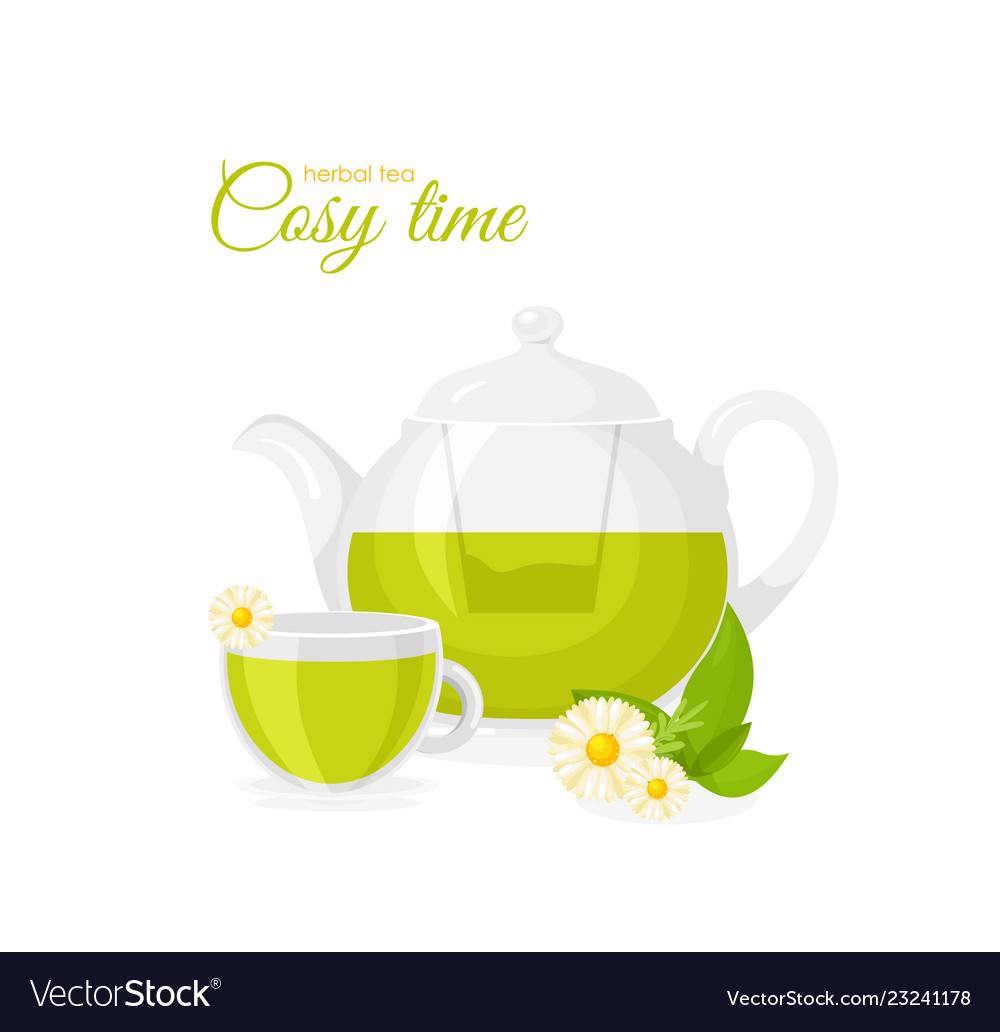 Pot and cup of herbal tea