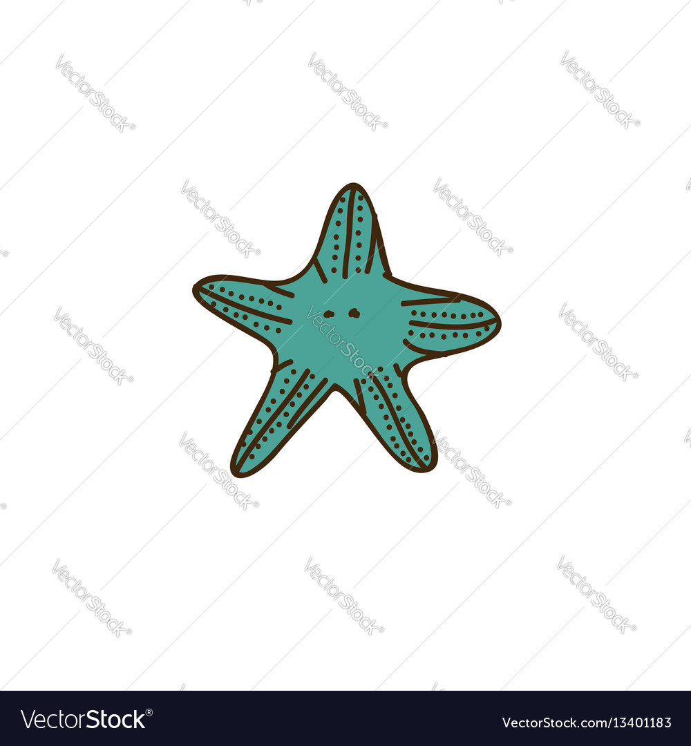 Colorful starfish icon stock