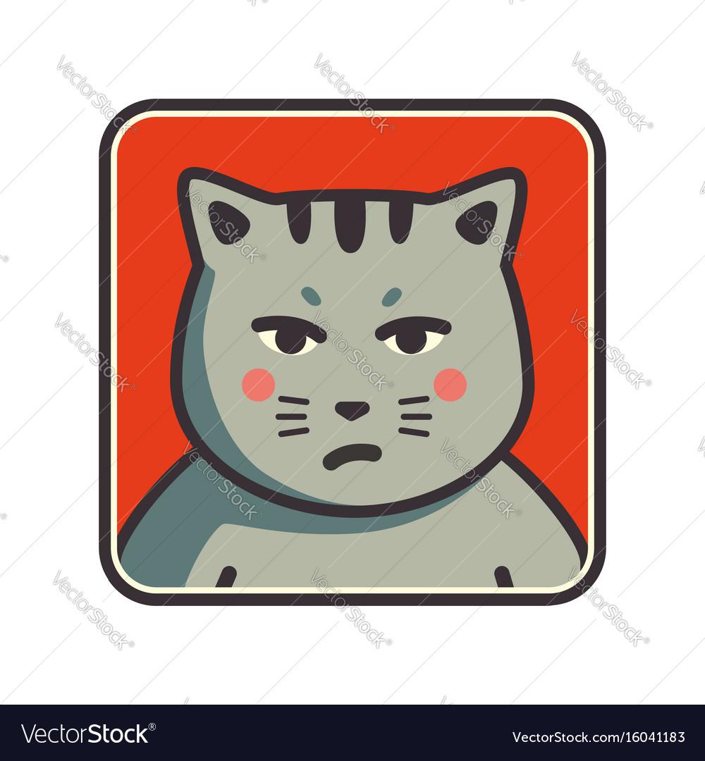 Cute sad grumpy cat icon cat avatar