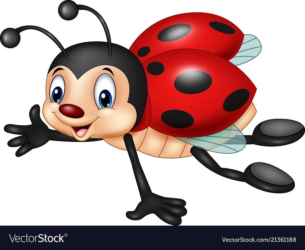 Cartoon ladybug flying isolated on white backgroun