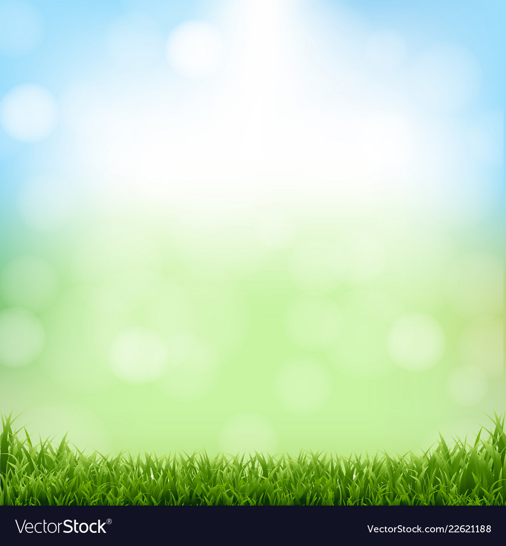 Nature green background with bokeh and grass Vector Image