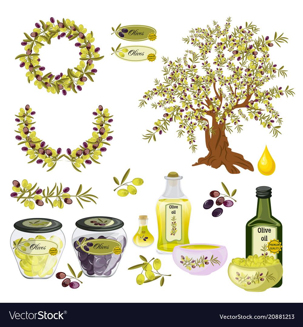Oil olive tree food bottle label