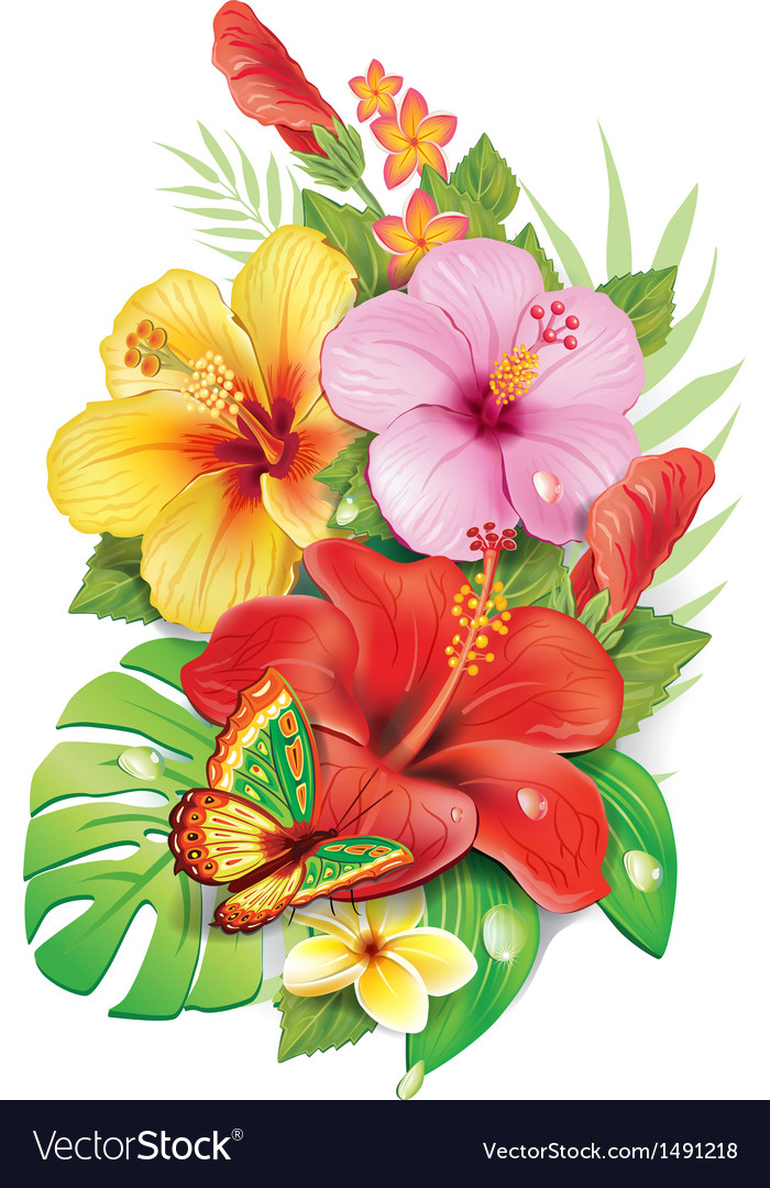 Tropical Flower On Koh Samui Thailand: Bouquet Of Tropical Flowers Royalty Free Vector Image