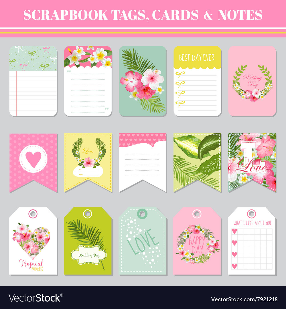 Scrapbook Tags Cards And Notes For Birthday Vector Image