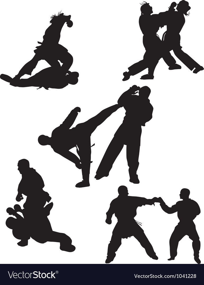 Karate silhouette vector image