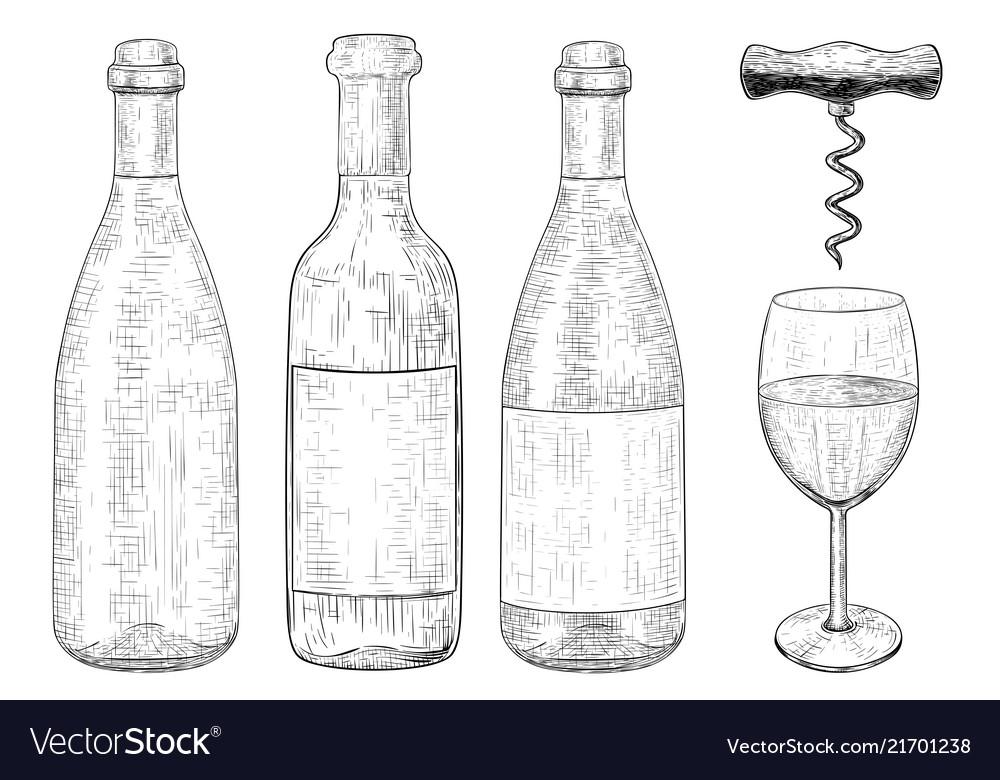 Bottles of wine set hand drawn sketch