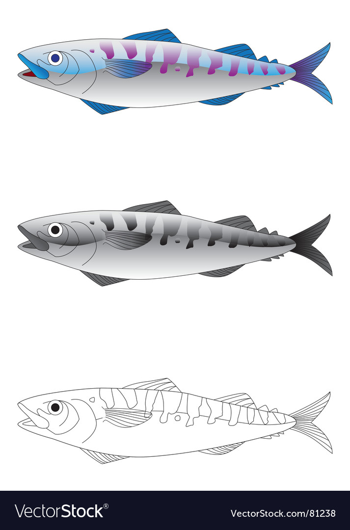 Deep sea fish vector image