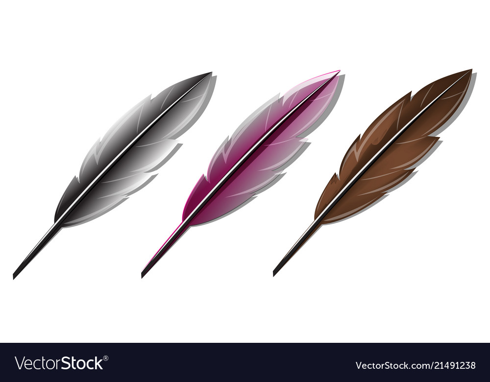 Feather pen set on white background