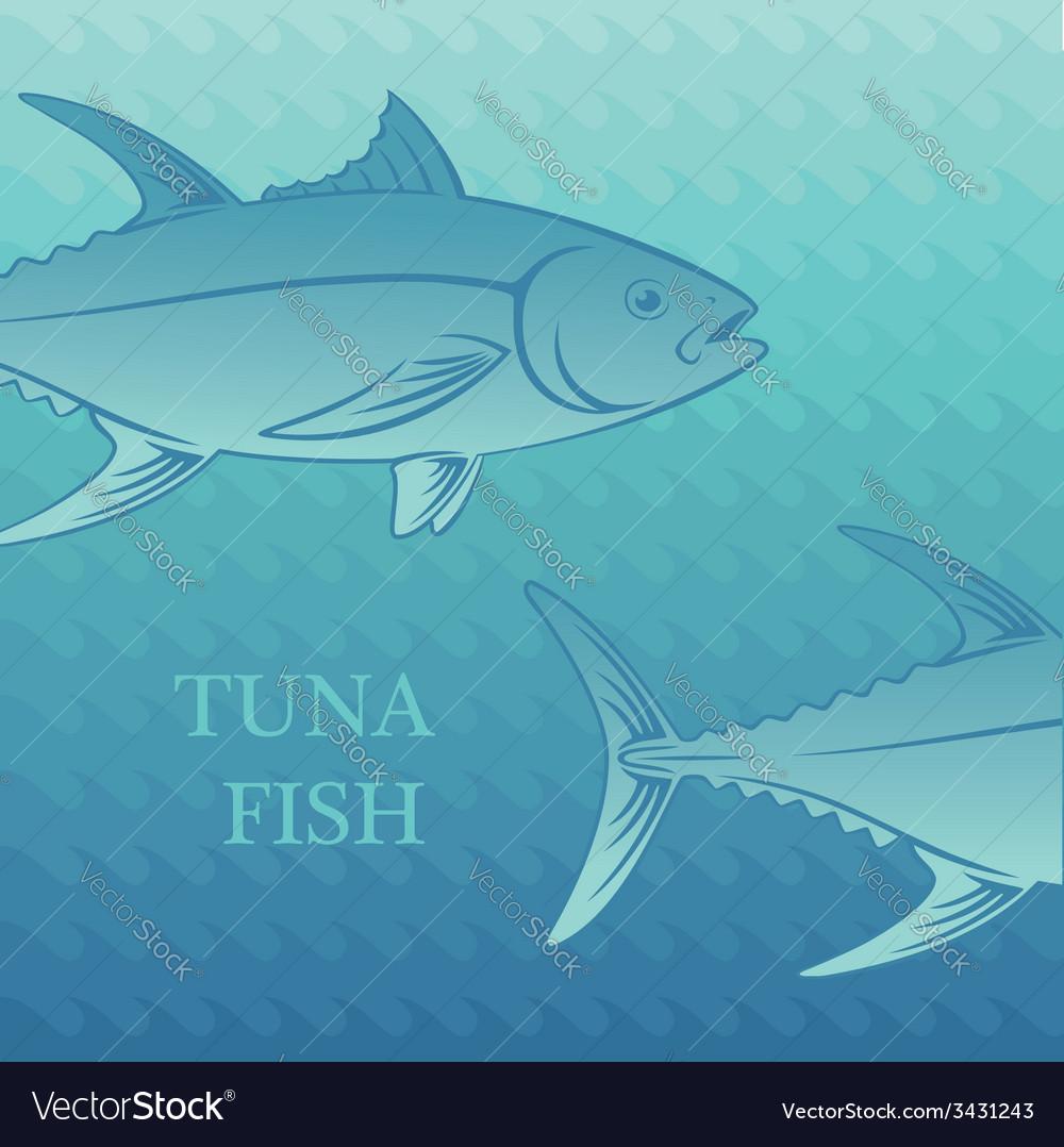 Fish tuna