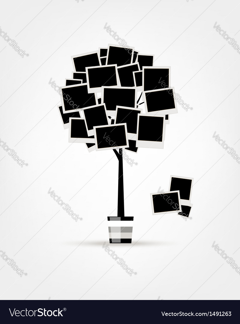 Family tree design insert your photos into frames vector image