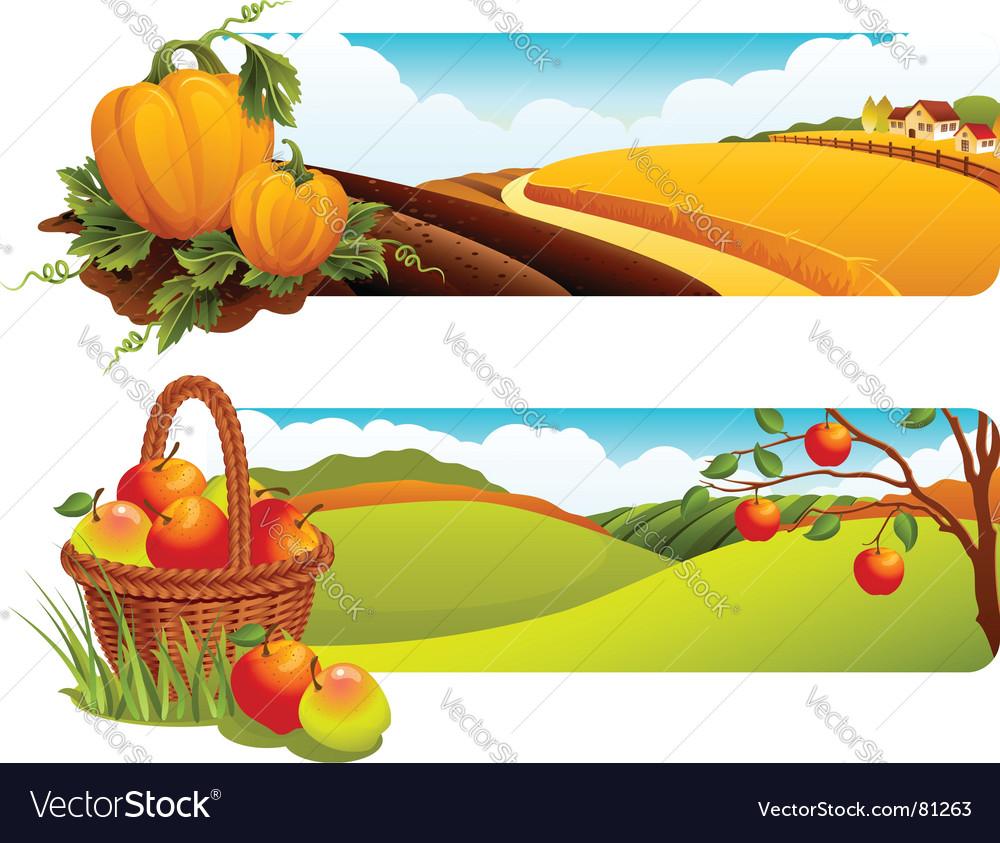 Harvest vector image