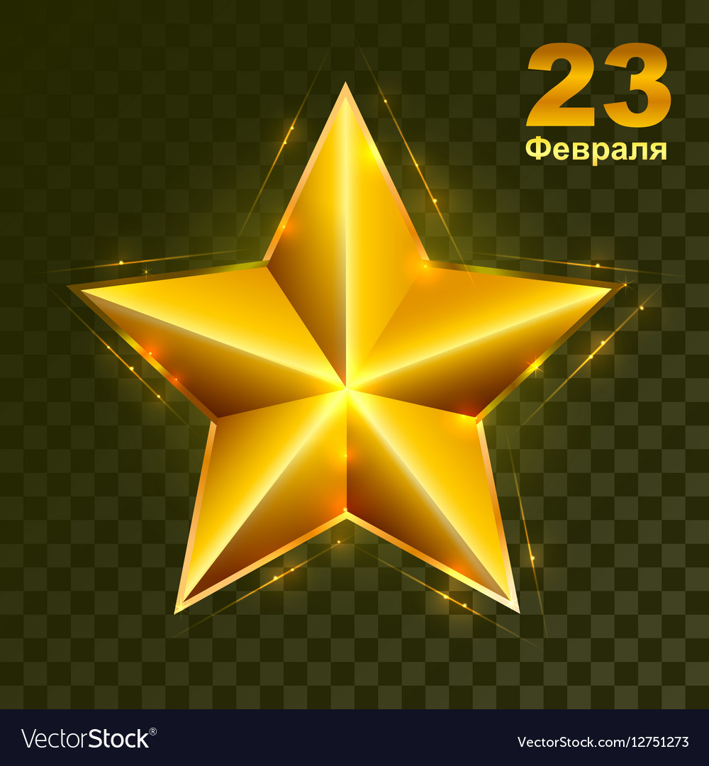 Gold star on transparent background Defender of vector image
