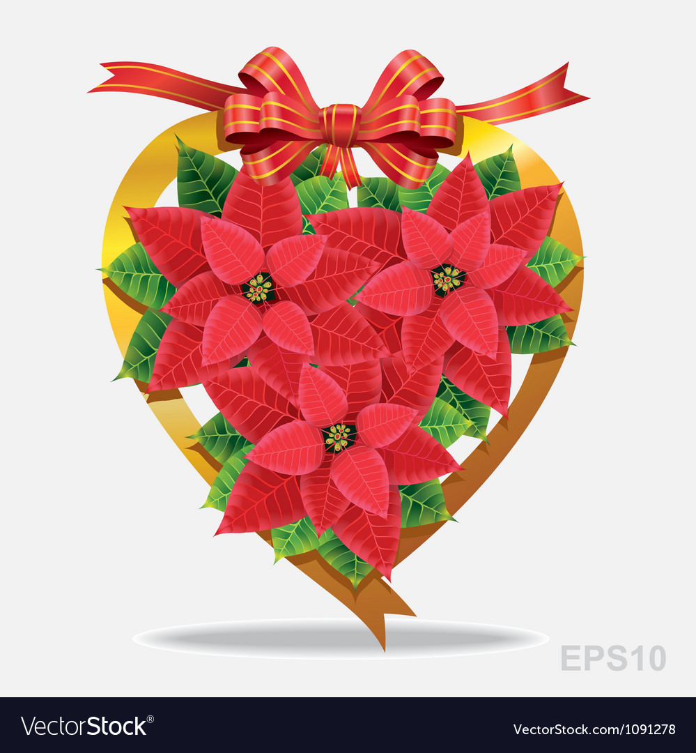 christmas decoration poinsettia with red ribbon vector image