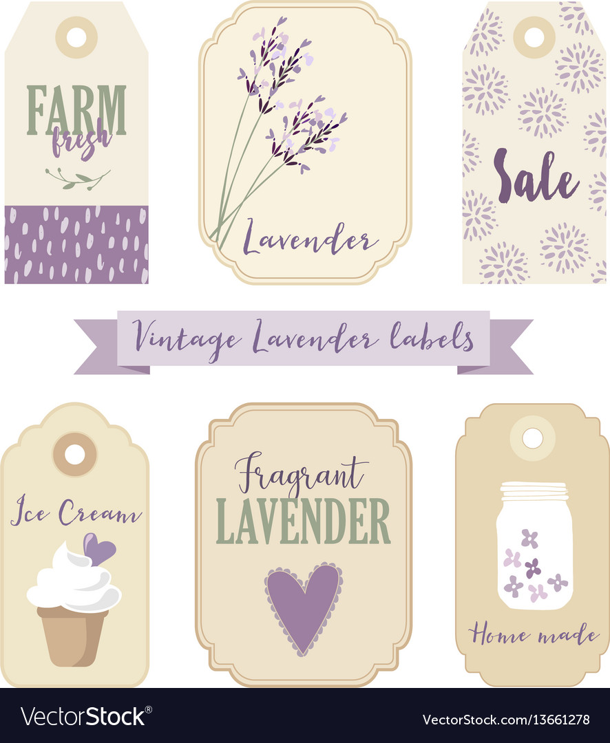 Set of vintage labels and tags with lavender
