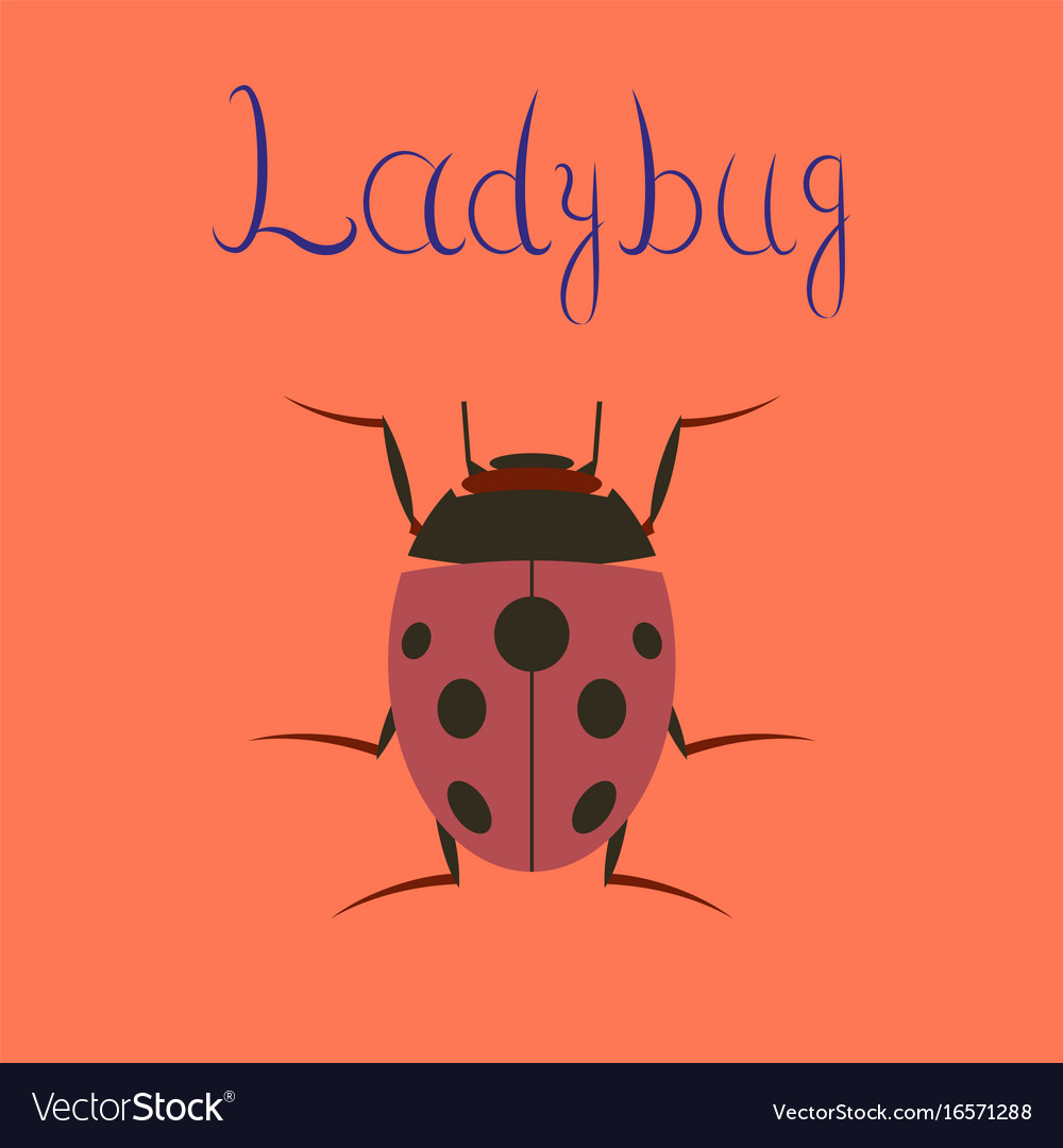 ladybug logo symbol icon sign without any spots