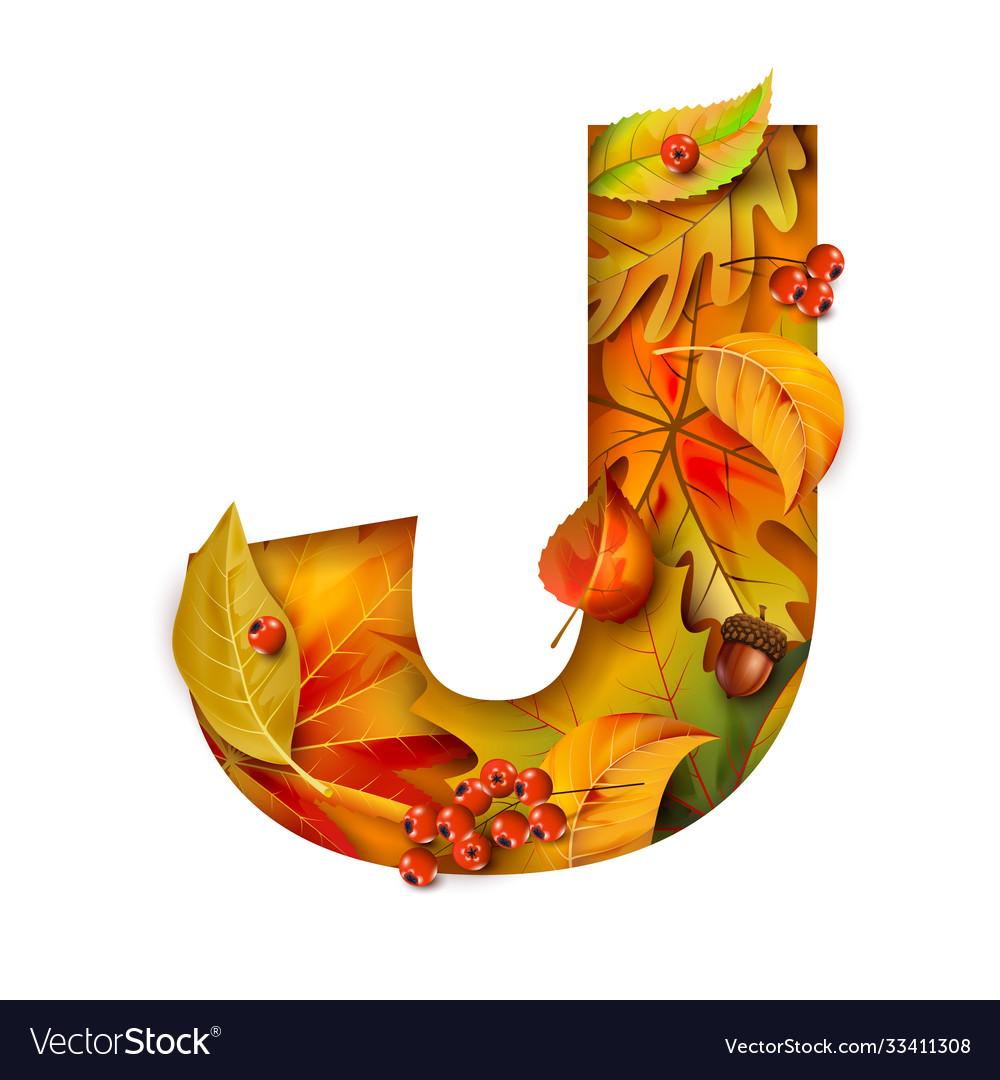 Autumn stylized alphabet with foliage letter j