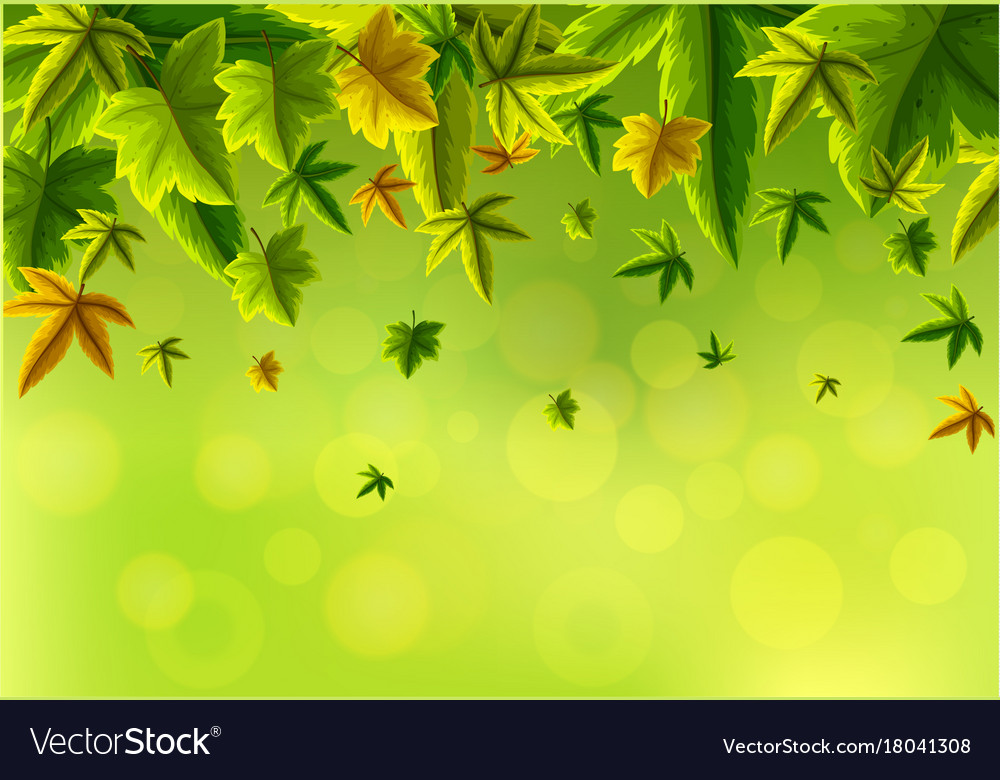 View Green Leaf Backgrounds Images