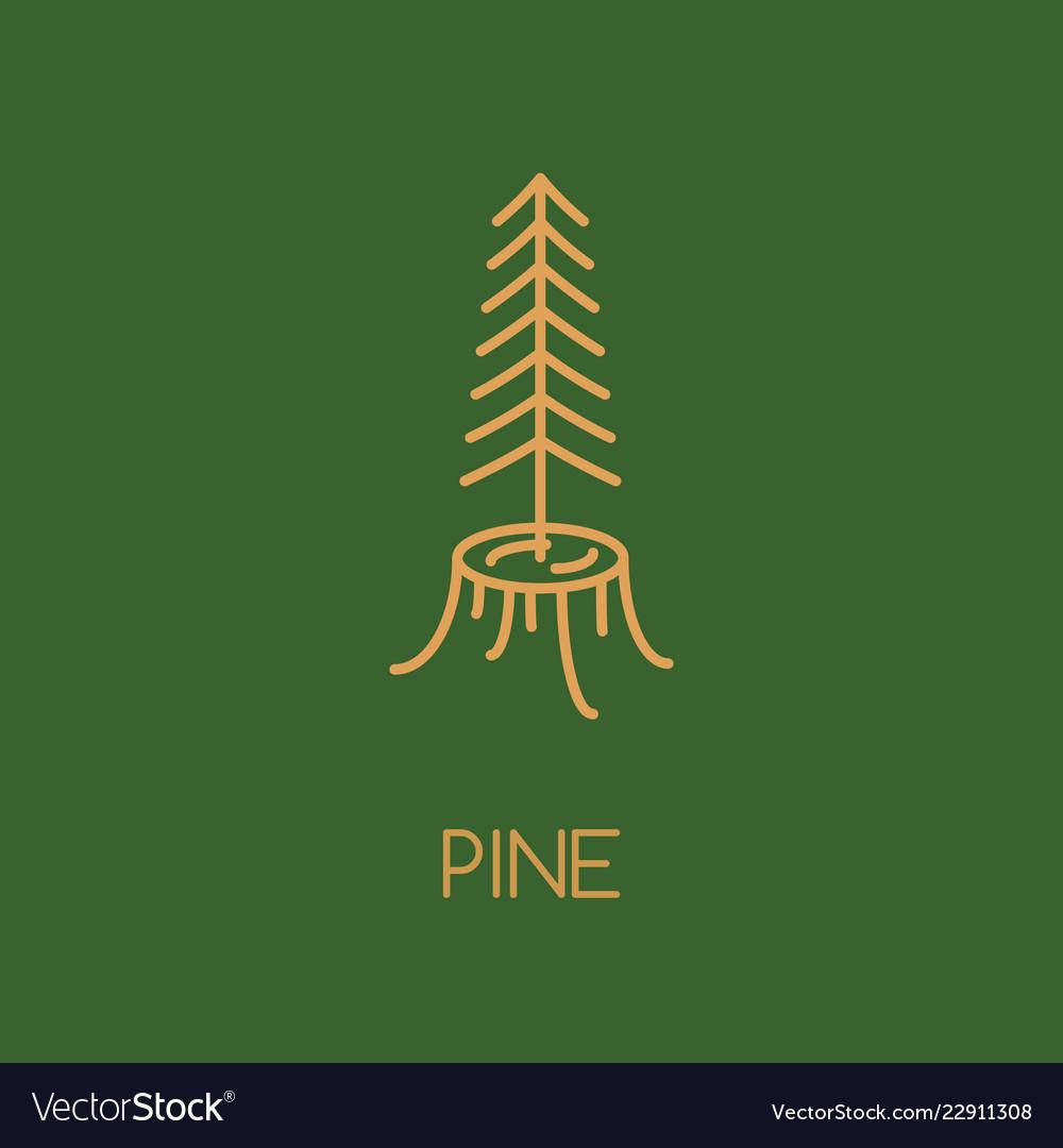 Pine tree logo icon design line style woods