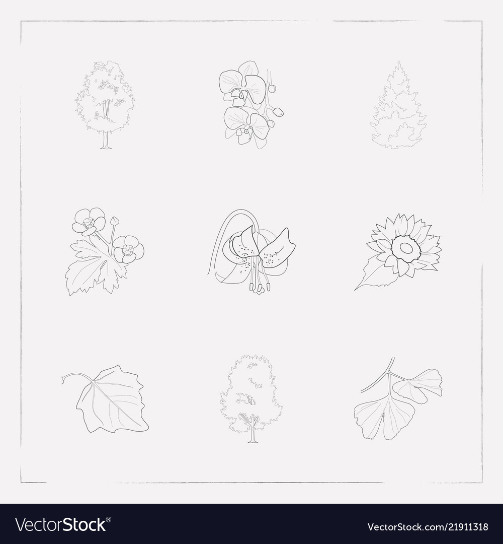 Set of plant icons line style symbols with