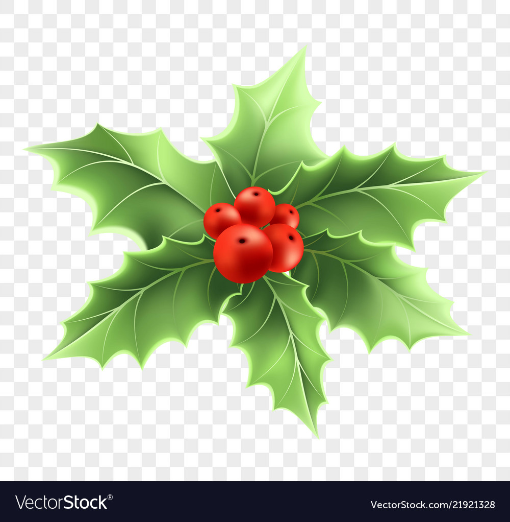Christmas holly branch realistic