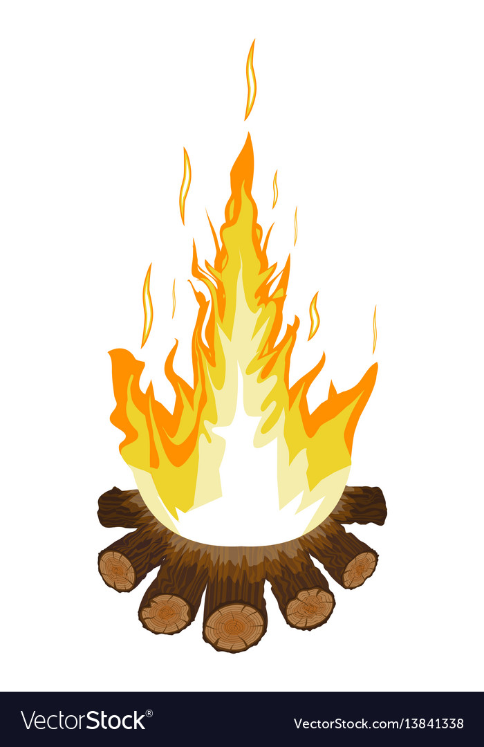 Burning bonfire or campfire logs and fire