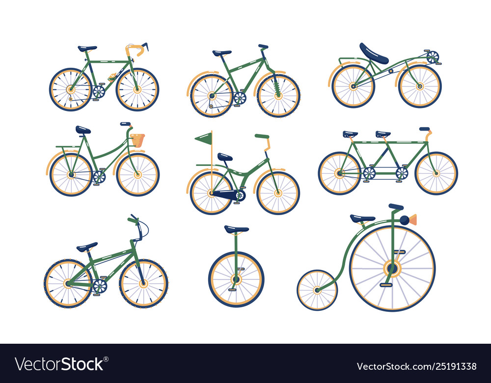 Types Of Bicycles >> Different Types Bicycles Set Royalty Free Vector Image