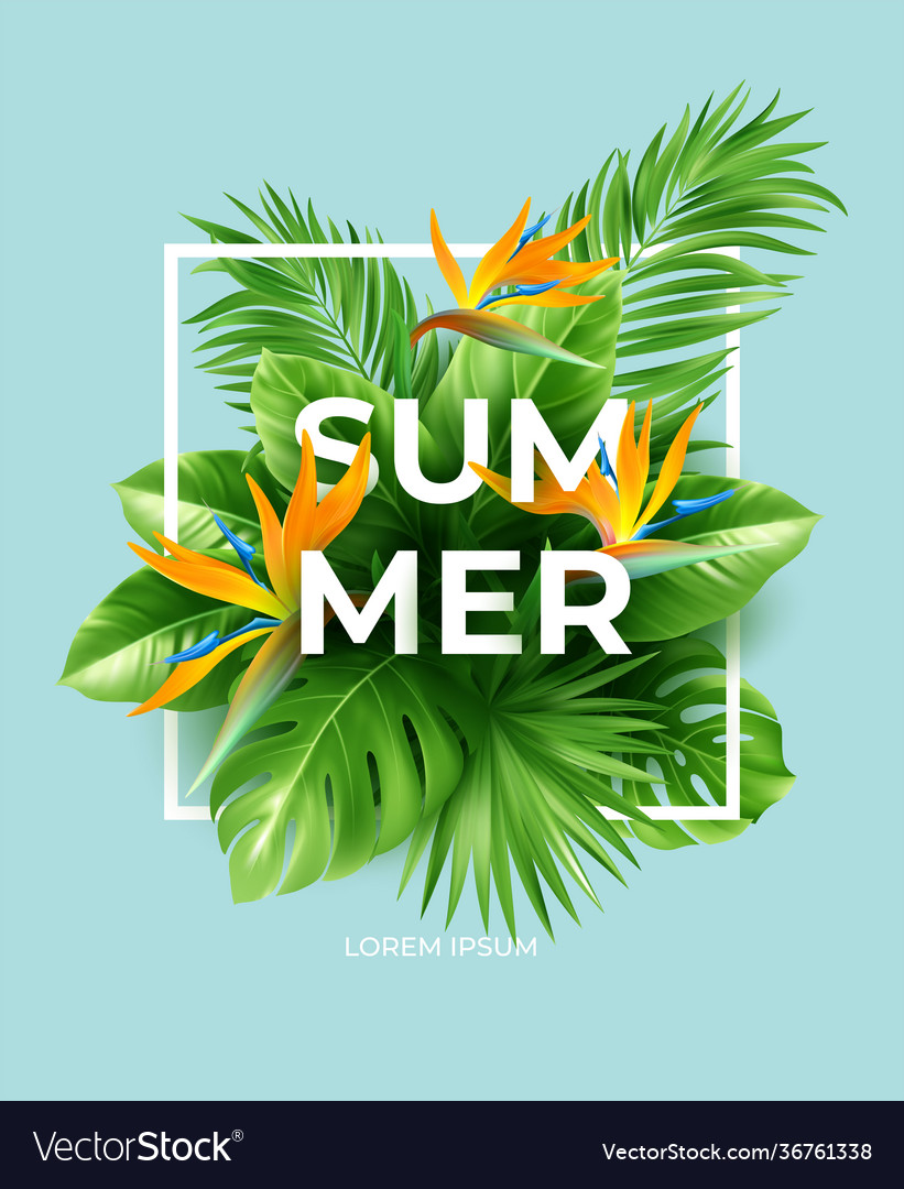 Summer tropical background with strelitzia flowers