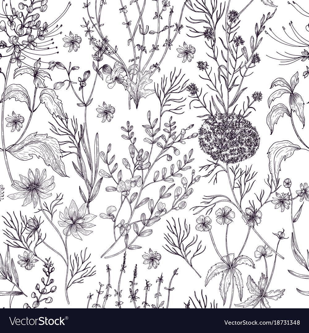 Antique floral seamless pattern with wild flowers