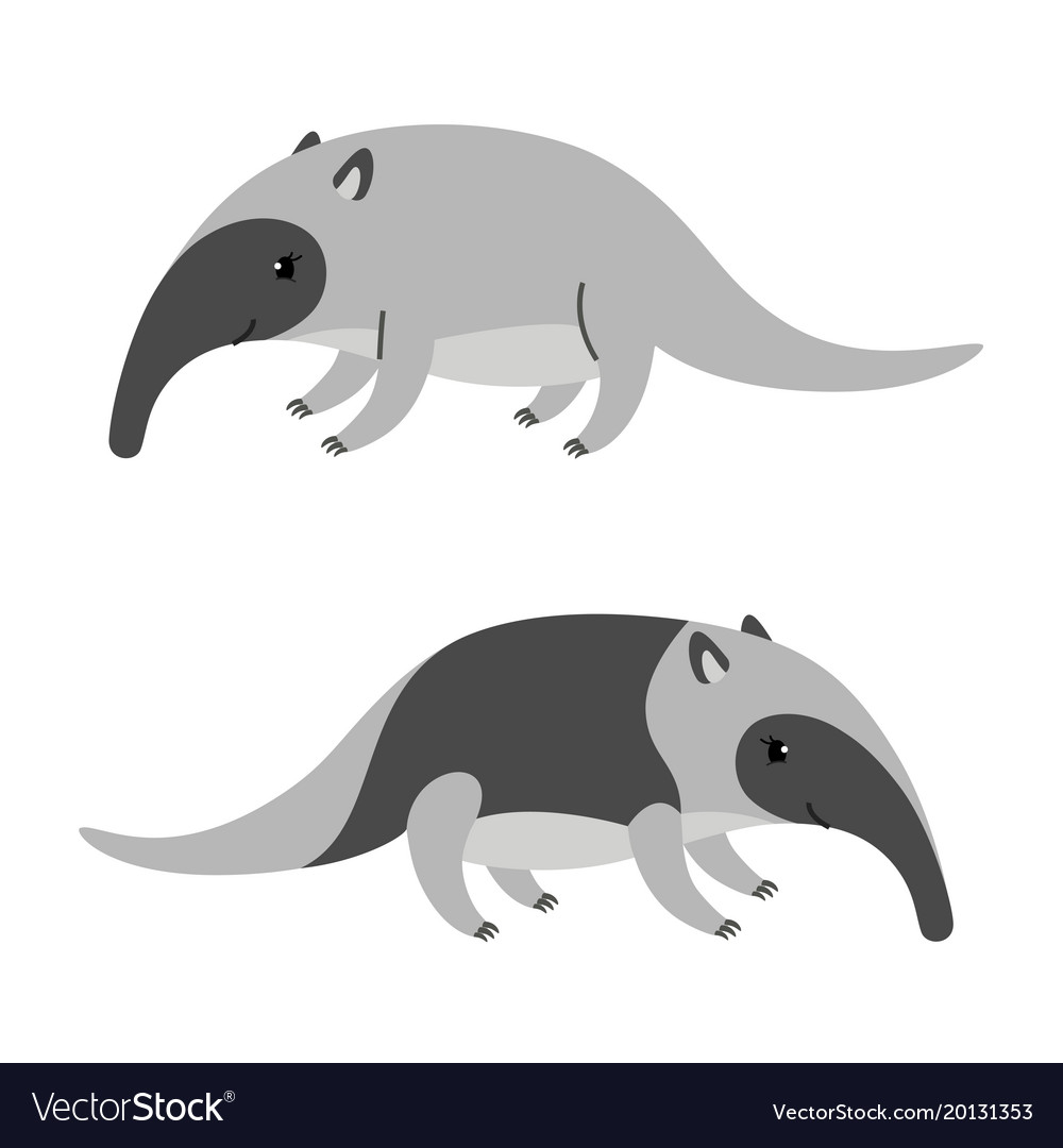 Cute cartoon anteater isolated on white background