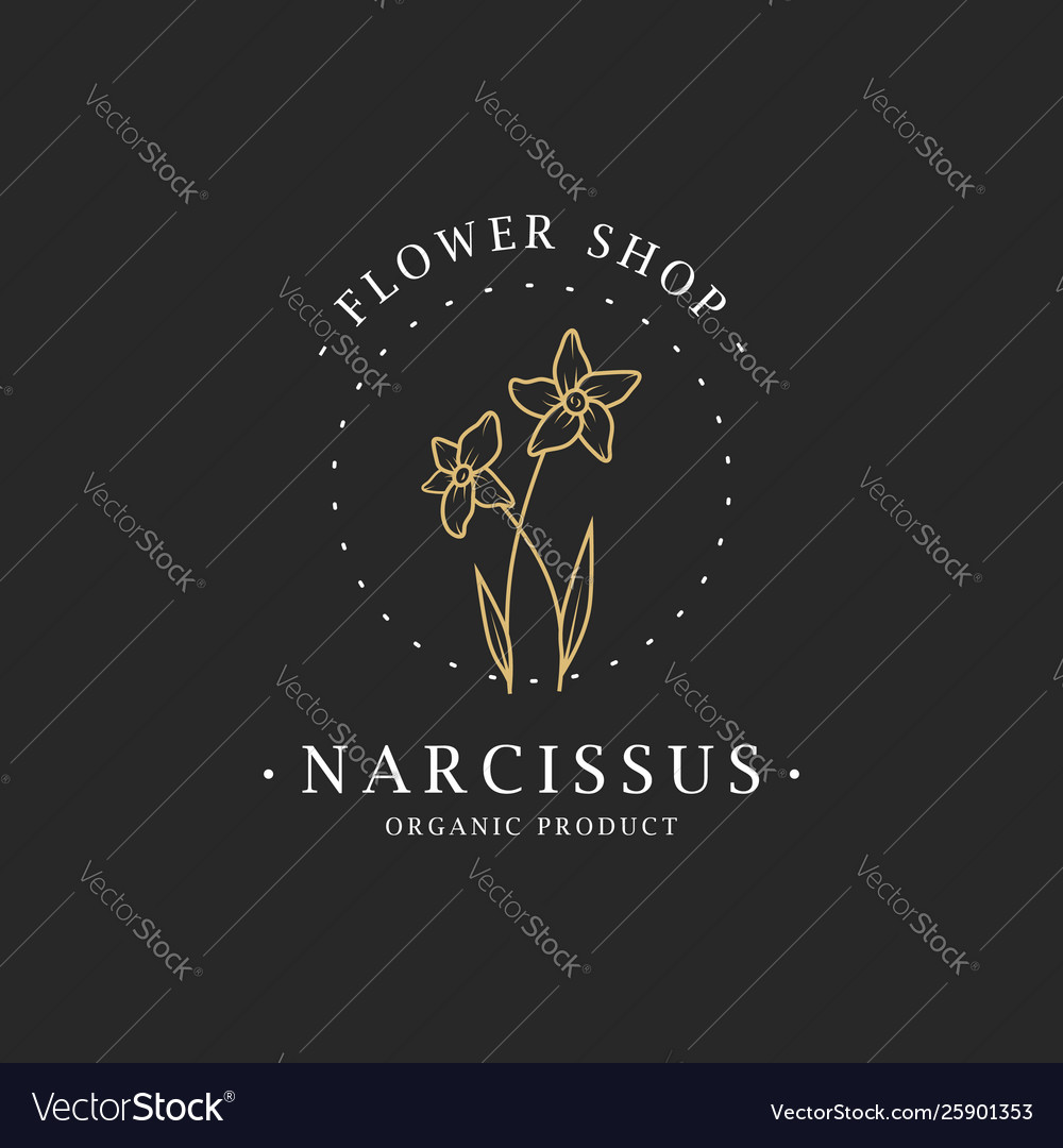 Narcissus flower logo for spa and beauty salon