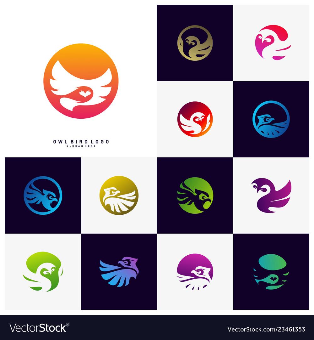 Owl logo design template bird logo concept