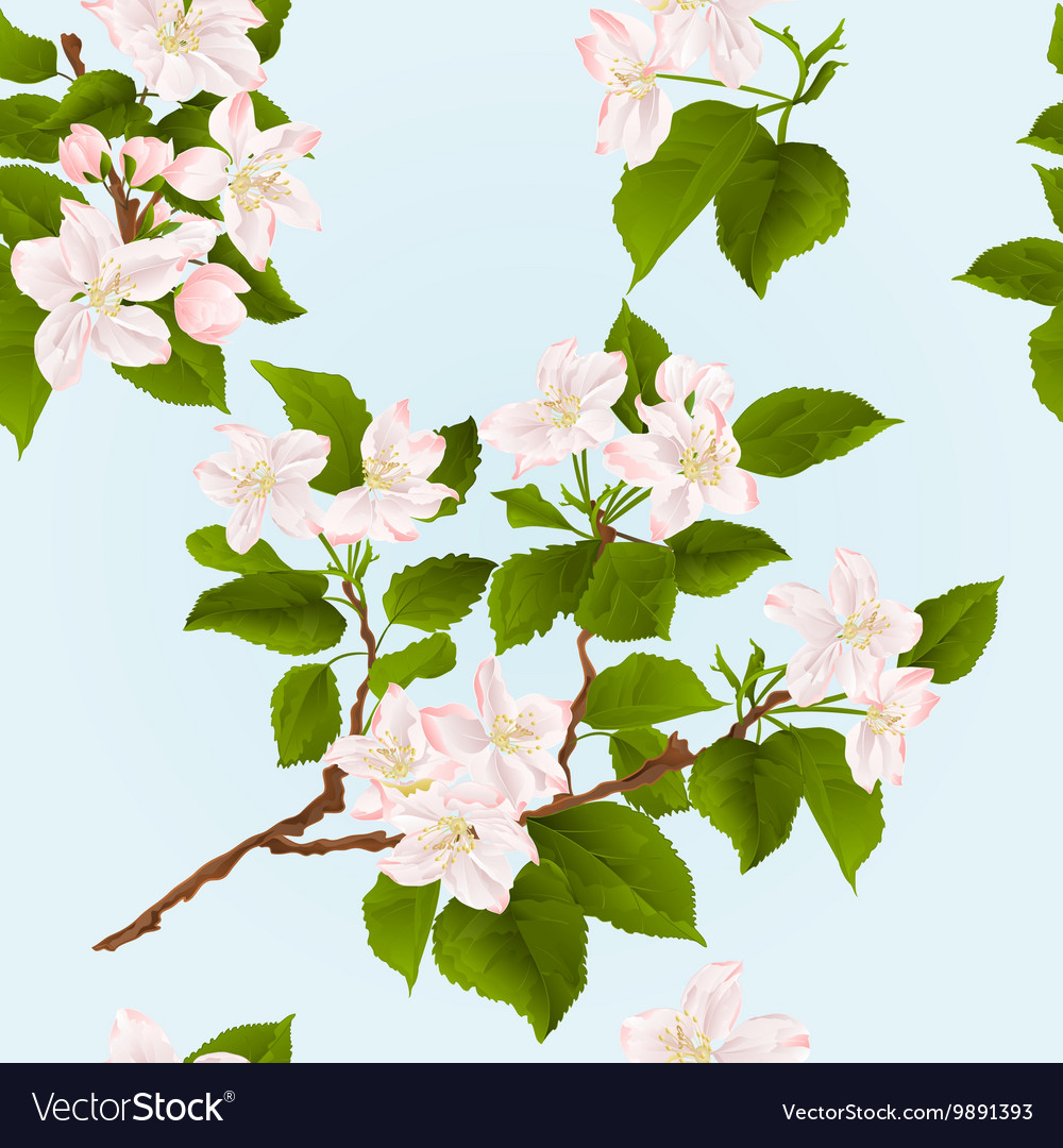 Seamless texture apple tree branch with flowers