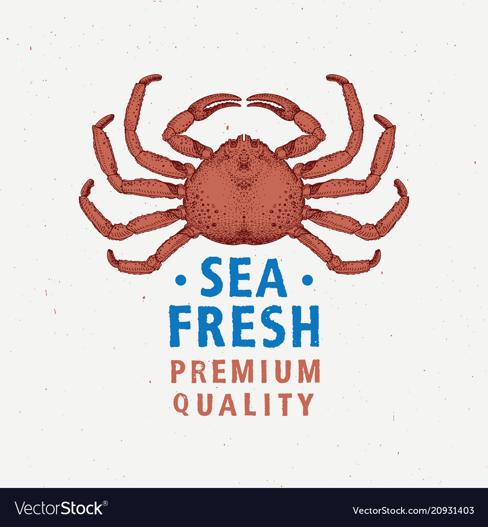 Seafood vintage label with red crab hand drawn