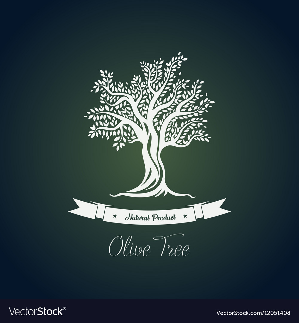 Fruit food plant or olive oil tree logo vector image