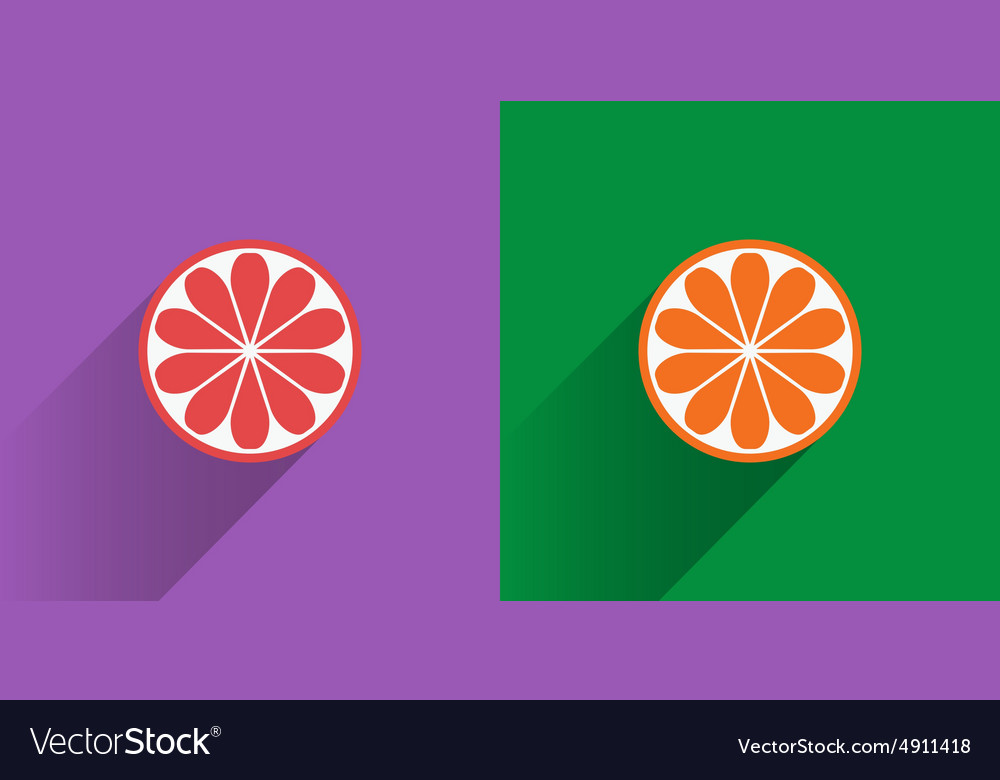 Collection of four citrus fruits icons in flat