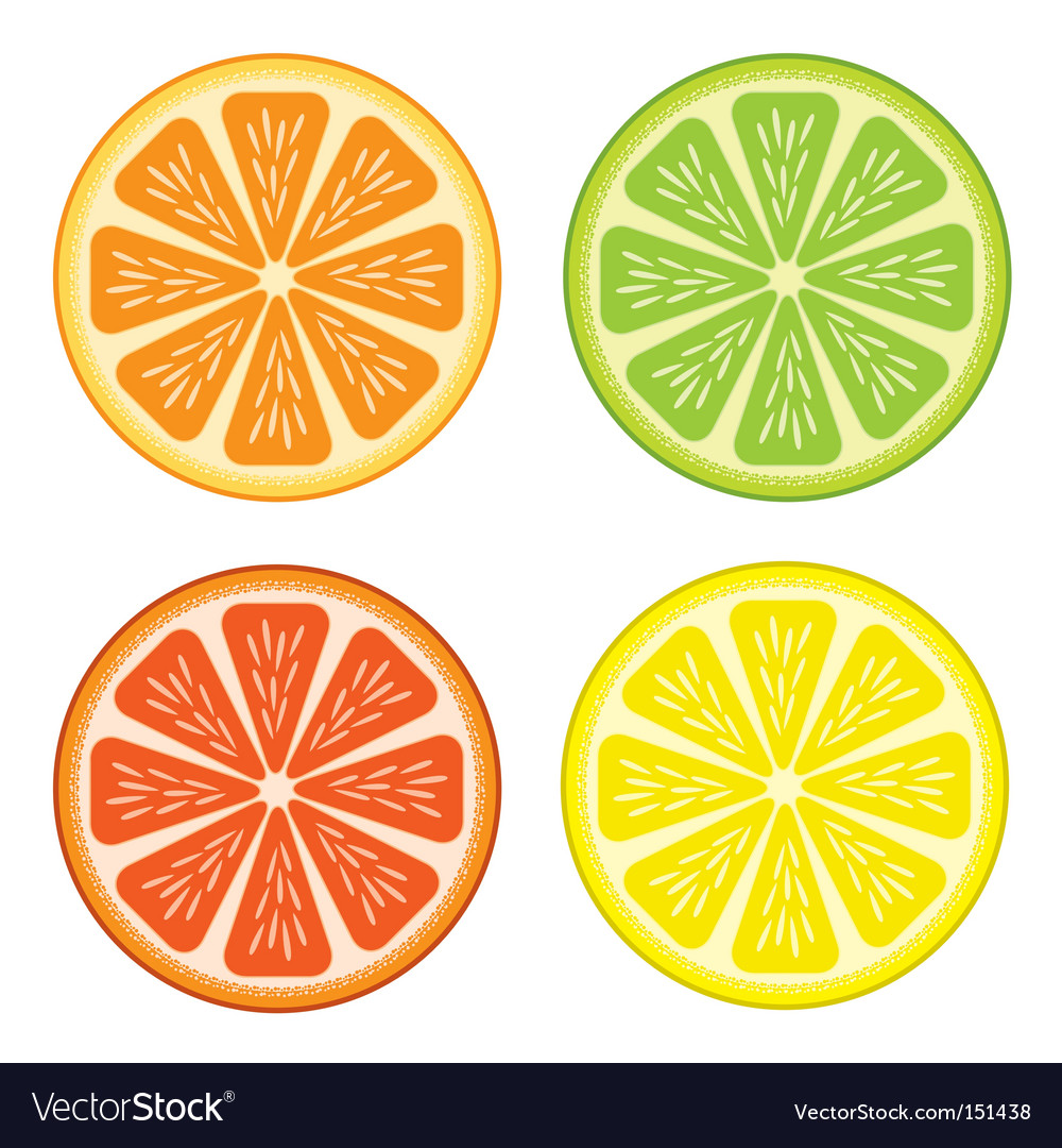 Free Vector Fruits on Citrus Fruit Vector 151438   By Antonuk