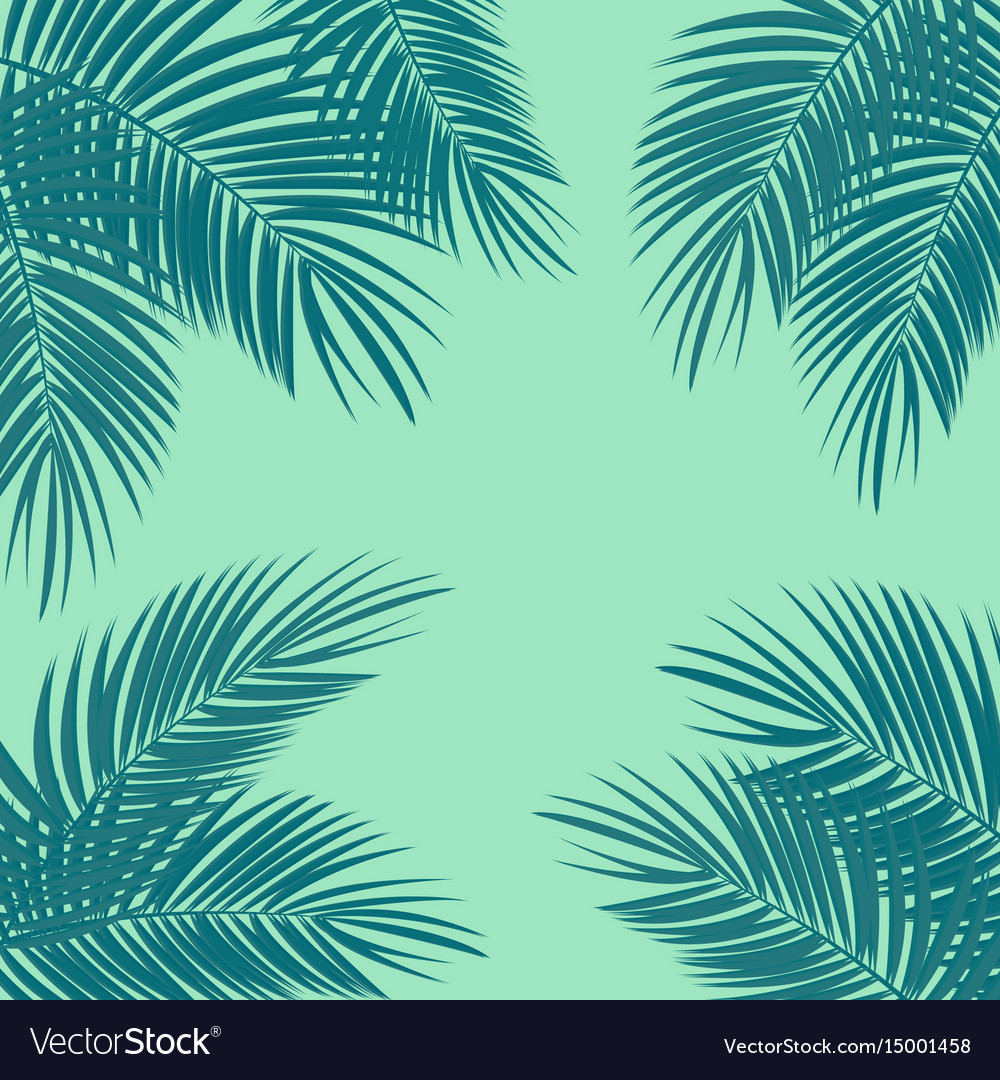 Palm Leaf Background Royalty Free Vector Image