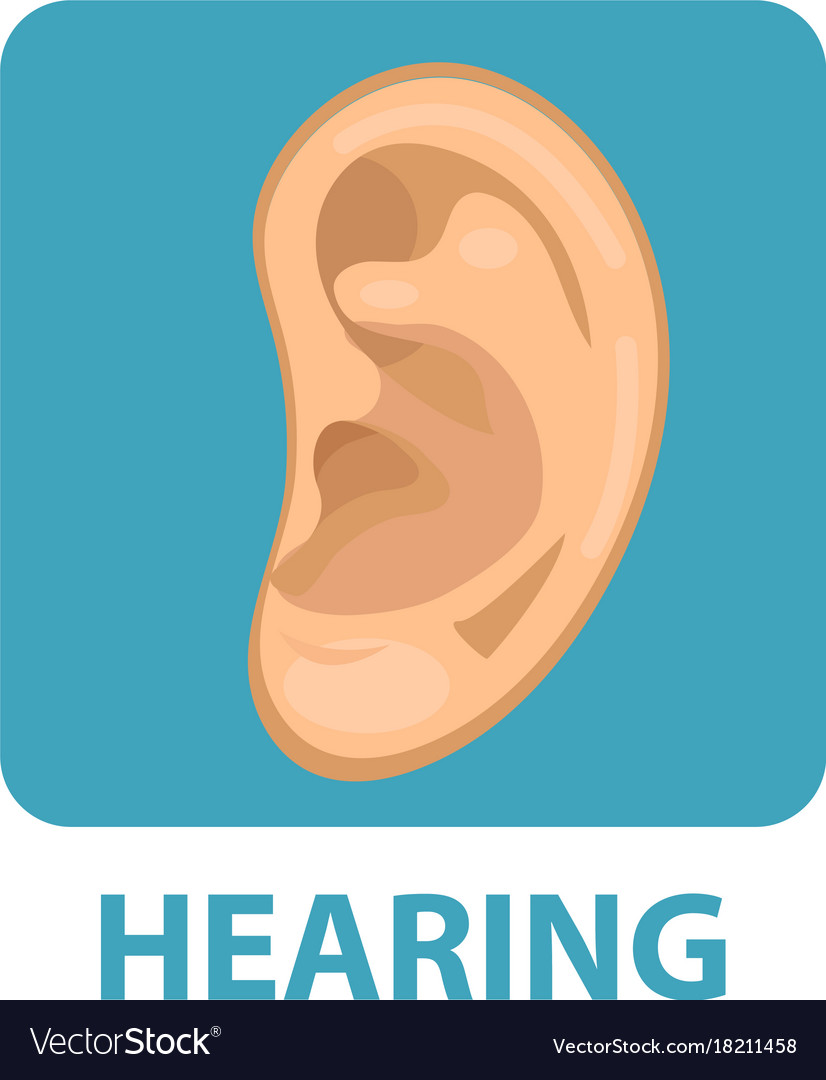 Sensitive hearing icon flat style ear isolated