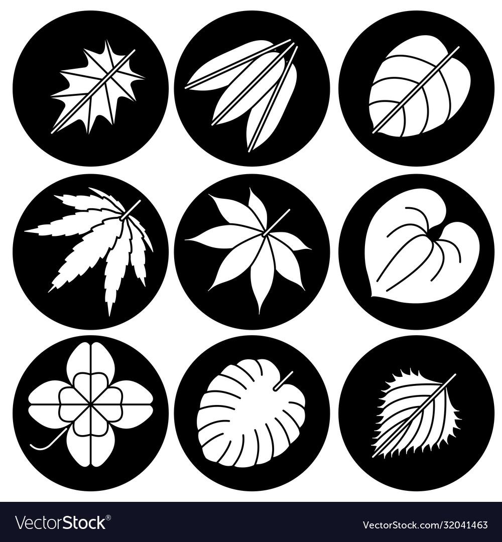 Leaf icon leaf icon eps10 leaf icon leaf icon
