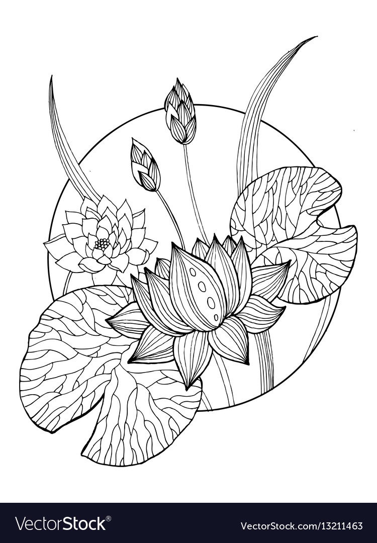 Lotus flower coloring book
