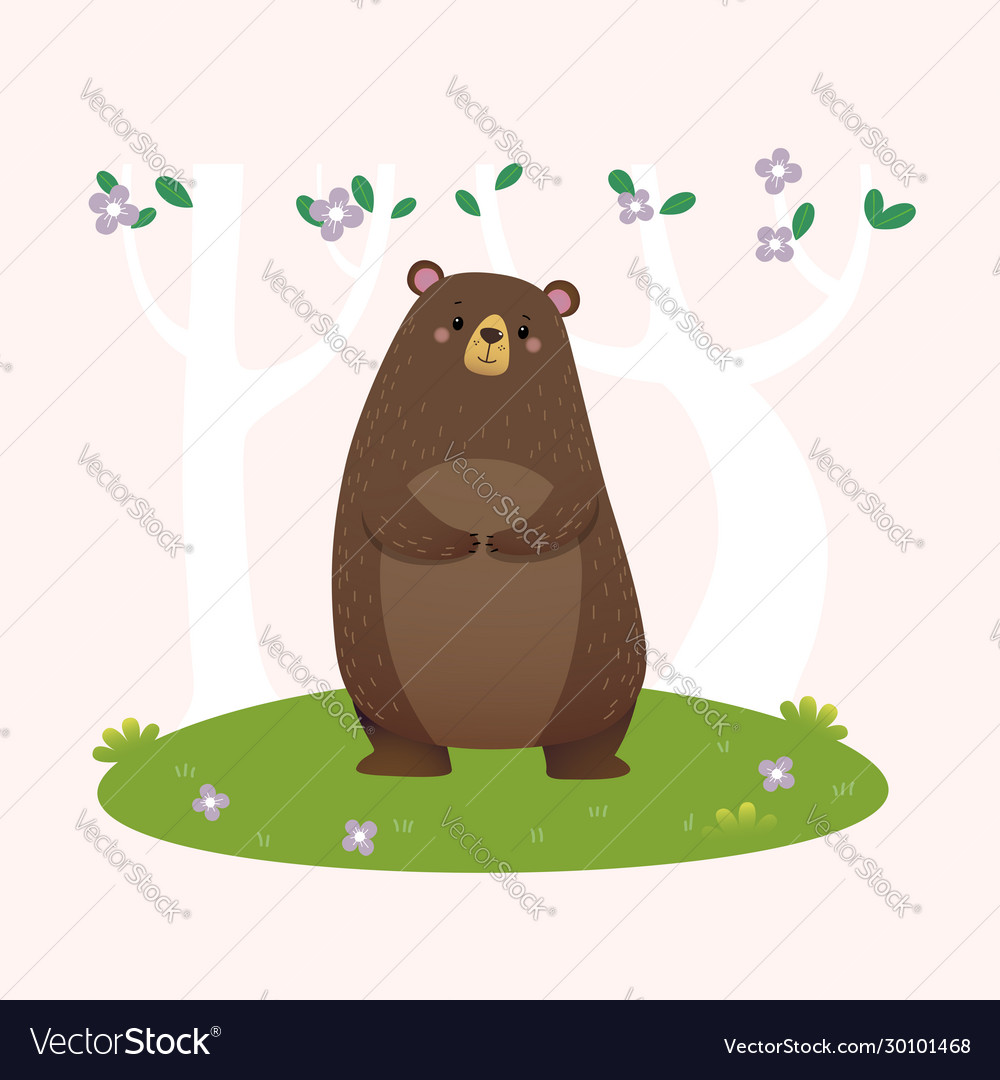 Brown bear standing in forest