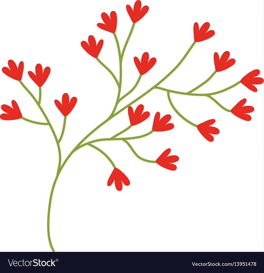 Red flower ornate image vector image