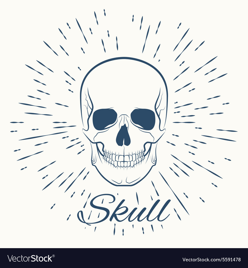 Skull and vintage sun burst frame vector image