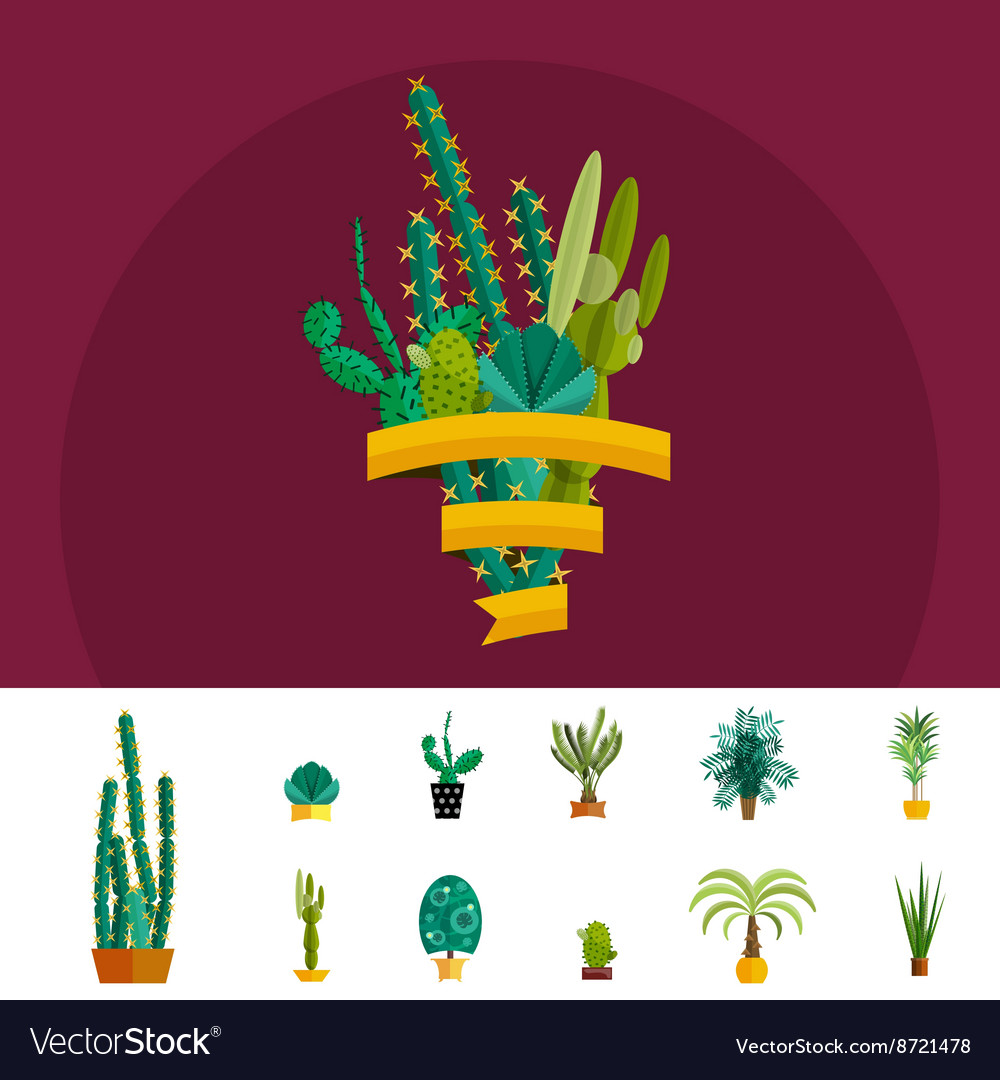Tropical plants cactus set in flat style
