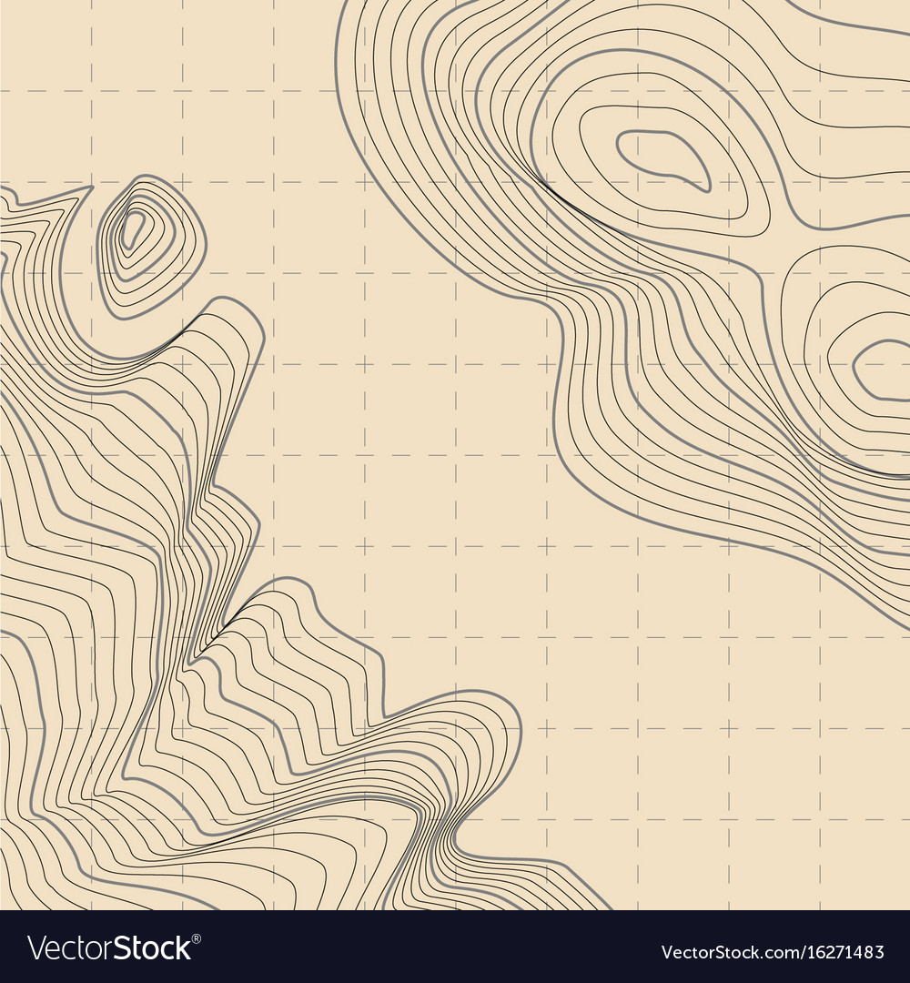 Abstract topographic contour map