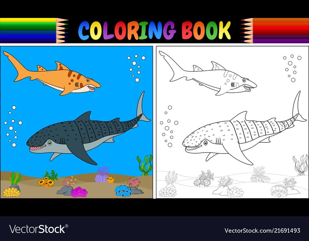 Coloring book two cartoon shark