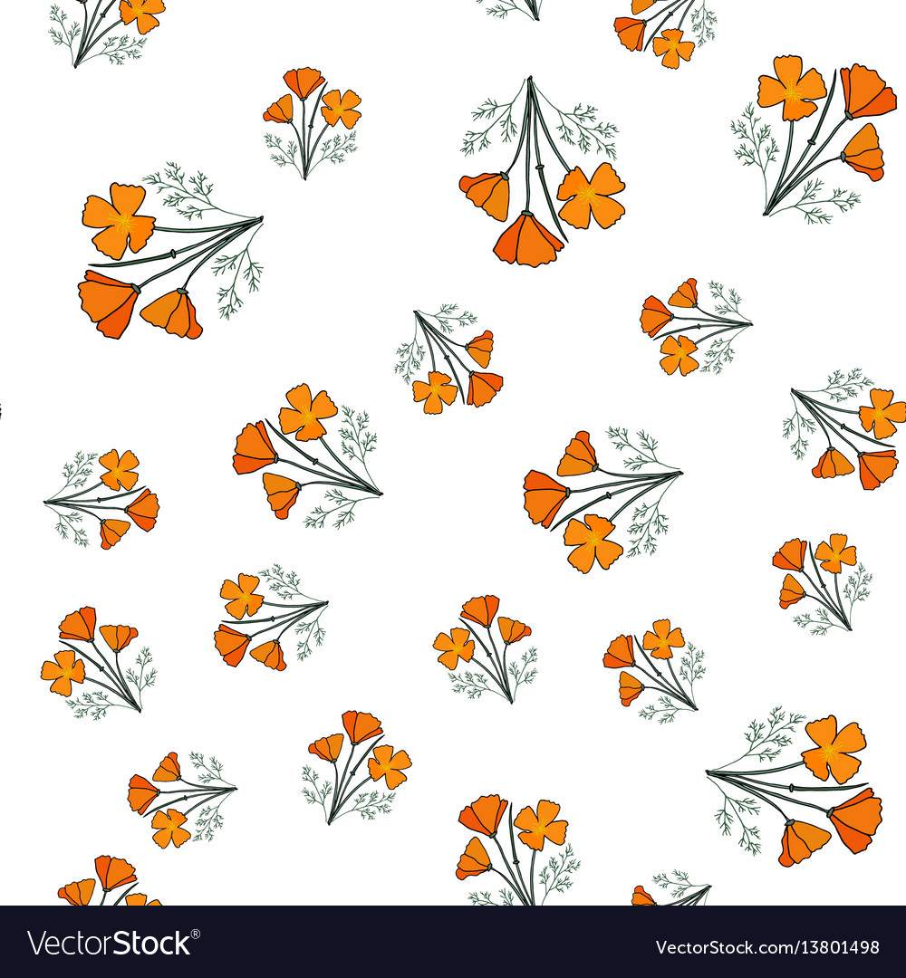 Seamless pattern with californian poppy