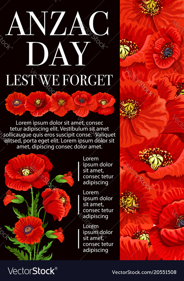 Anzac day poppy flower for lest we forget banner vector image mightylinksfo