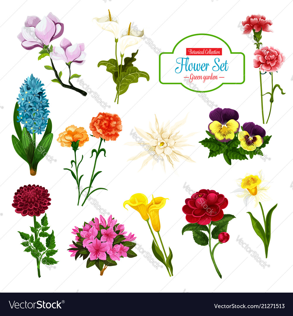 Flower of spring blooming plant and tree icon